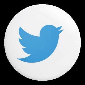 Platform twitter Icon